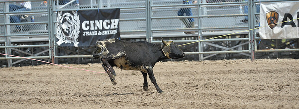 DSC_4000 Bridgerland HS Rodeo