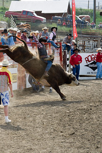 Bull tries to lose cowboy