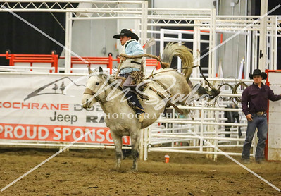 Saddle Bronc