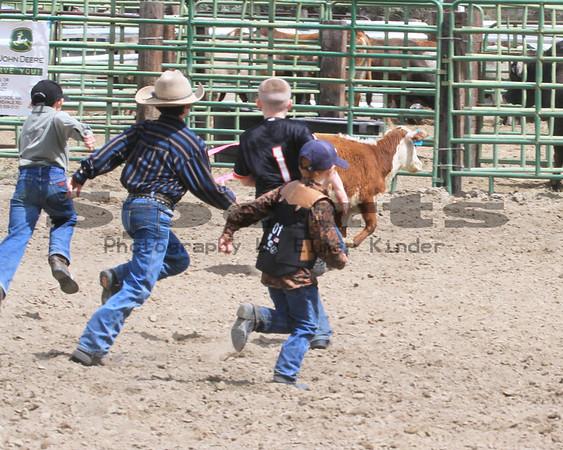 2014 Calf Scramble/Arlington Jackpot Rodeo