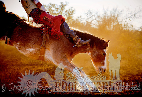 Rodeo Work