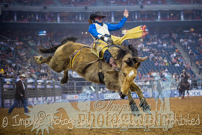 rodeo houston 10 web-1715