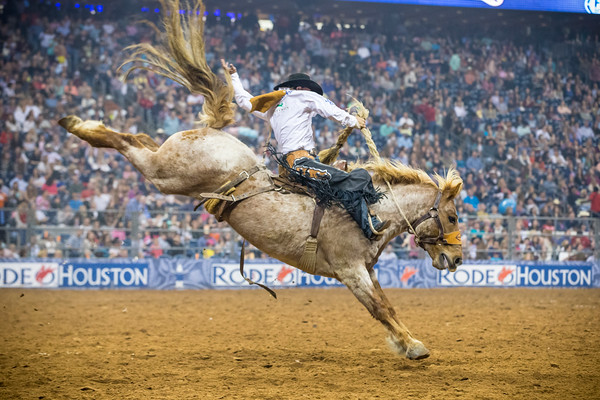 rodeo houston 14-4435