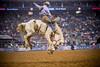 rodeo houston 10 web-2012