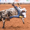 DS_Rodeo_2015-0023