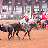 DS_Rodeo_2015-9804