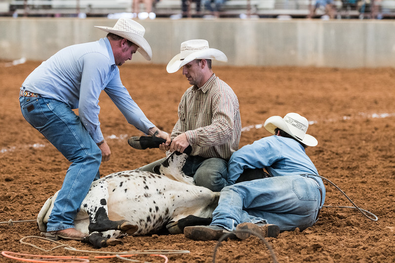 DS_Rodeo-4326