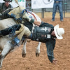 DS_Rodeo-4872