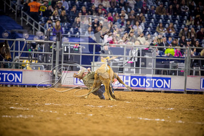 Rodeo Houston March 5 HR-2108