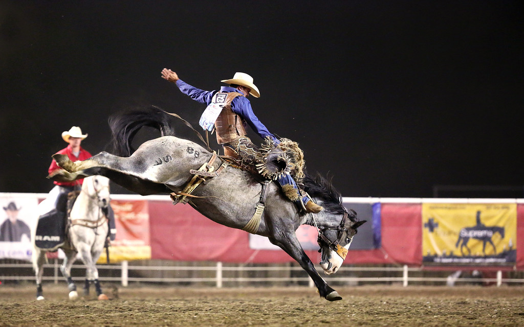 Clay Elliott from Nanton, AB  gets an 82 at the Wrangler Champions Challenge in Cody WY