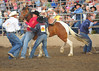 Lakeside Bulls Only Rodeo