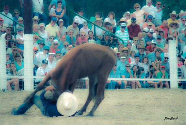 Lee County Rodeo NOV1988-8