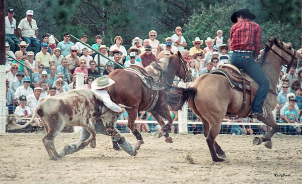 Lee County Rodeo NOV1988-17