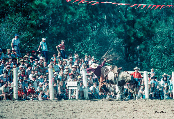 Lee County Rodeo NOV1988-6
