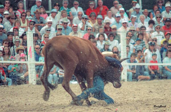Lee County Rodeo NOV1988-12