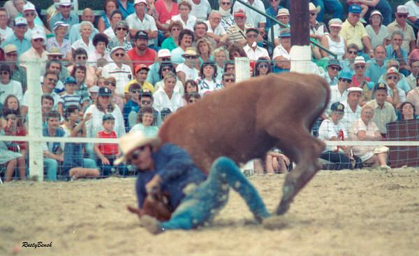 Lee County Rodeo NOV1988-14