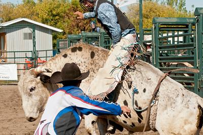 SR Bull Riding