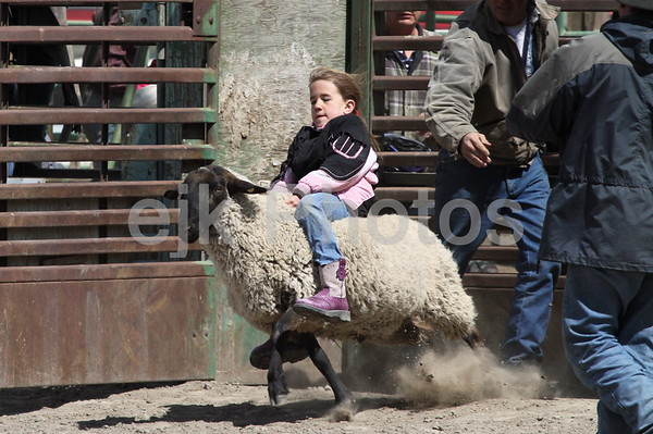 Arlington Mutton Bustin