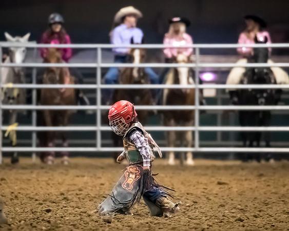 Norco Fair Junior Bull Riding - Sunday