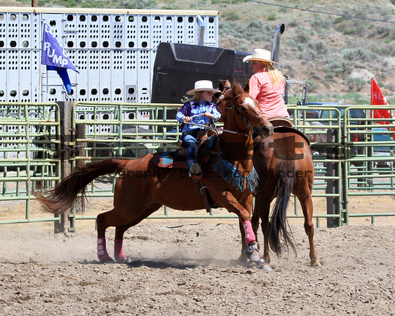 2016 Arlington Rodeo