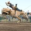 2008 Pincher Creek Pro Rodeo :