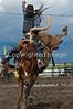 2009 Pincher Creek Pro Rodeo :