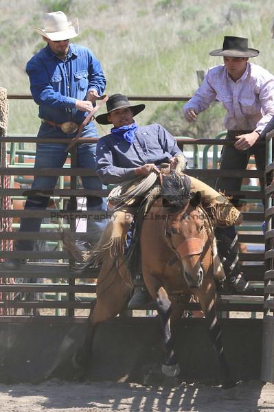 Ranch Bronc/Arlington Jackpot Rodeo 2012