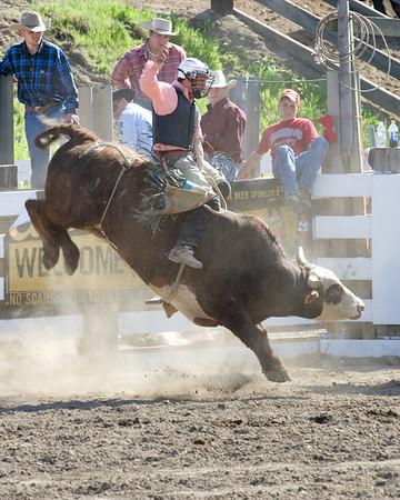 Bull gets a good start