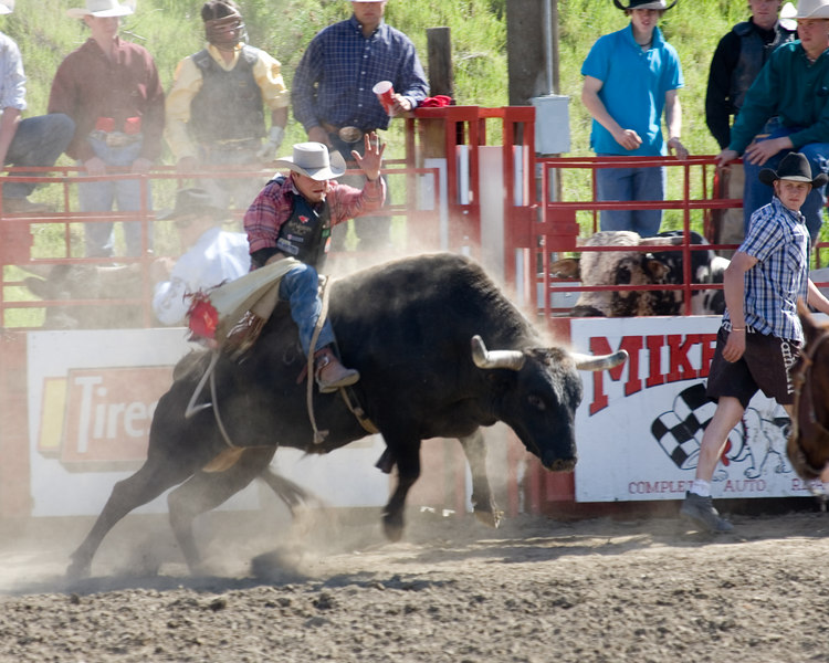 Chaps flying as bull gets started