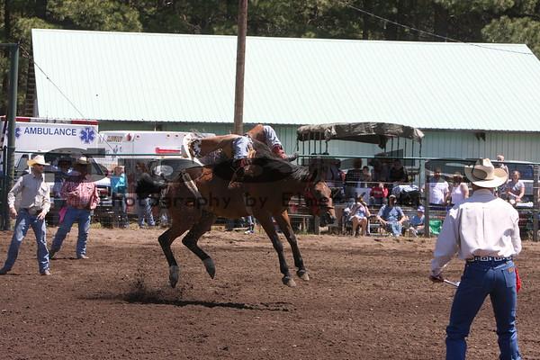 2008 Saddle Bronc