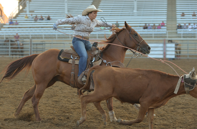 Justin Sheely | The Sheridan Press<br /> Nicole Cooper competes in mixed roping during slack at the Sheridan County Rodeo at the Sheridan County Fairgrounds Friday, Aug. 10, 2018.