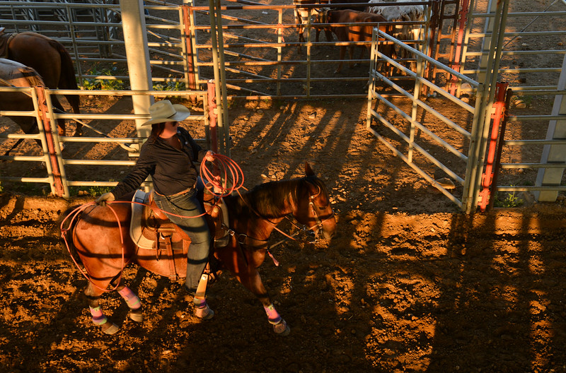Justin Sheely | The Sheridan Press<br /> Lauren Rives swings her rope during slack at the Sheridan County Rodeo at the Sheridan County Fairgrounds Friday, Aug. 10, 2018.