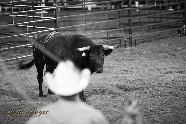 2018 TOT Rodeo Bull Fights