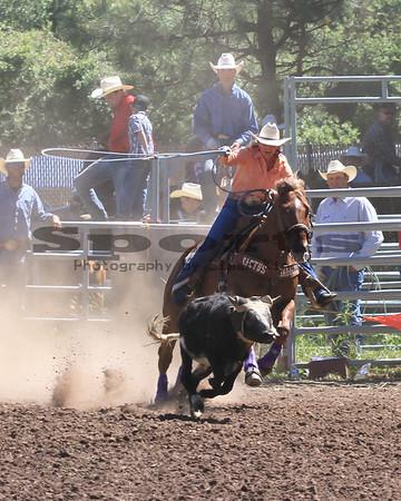 Team Roping Bickleton Rodeo 2013