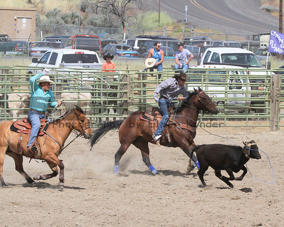 Team Roping/Arlington Jackpot Rodeo 2013