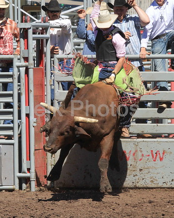 Bickleton Rodeo 2010