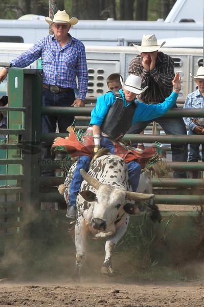 Bull Riding Ketchum Kalf /Glenwood 2012