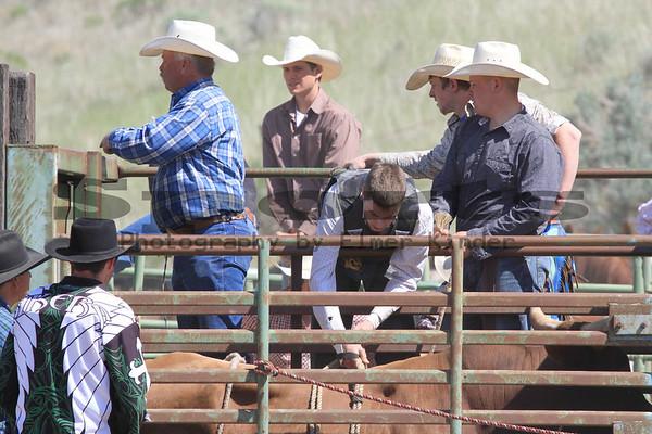 Bull Riding/Arlington Jackpot Rodeo 2012