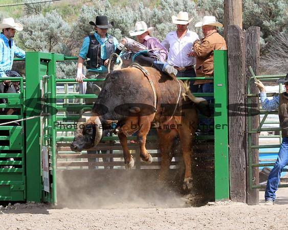 2014 Bull Riding