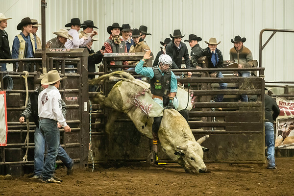 Box Elder County Rodeo