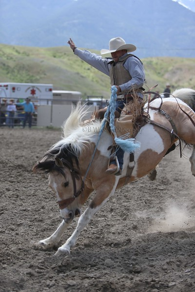 Yellowstone's Epic Horse Drive