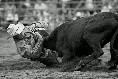 Struggle at the rodeo