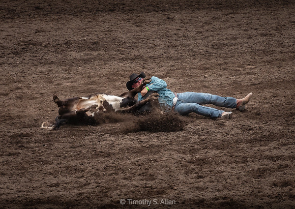 Steer Wrestling, Part 4