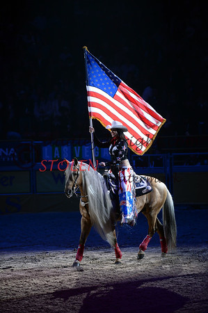 NFR2013-2-003 opening flag