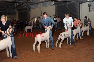Odessa2013-Lambs-003 sethSHANKLIN jimbreckBEAN