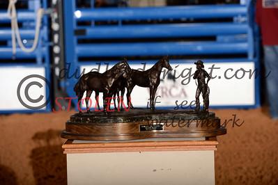 WCRR2013-Satnit-2675 Bronze AQHABestRemuda Zoetis Award