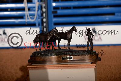 WCRR2013-Satnit-2674 Bronze AQHABestRemuda Zoetis Award
