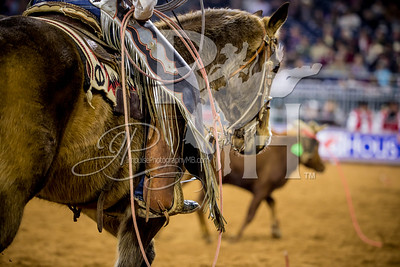 Rodeo Houston March 5 HR-1831