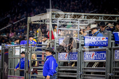 Rodeo Houston March 5 HR-1825