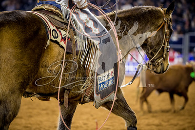 Rodeo Houston March 5 HR-1832